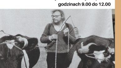 Doroczny przemarsz krów na sierpniowe pastwiska